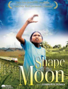 The Shape of the Moon