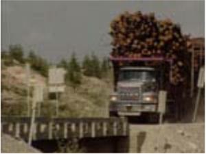L'Erreur boréale (1999) de Robert Monderie et Richard Desjardins (Production ACPAV – ONF), monté par Alain Belhumeur