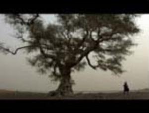 Un Fleuve humain (2006) de Sylvain L'Espérance, monté par René Roberge